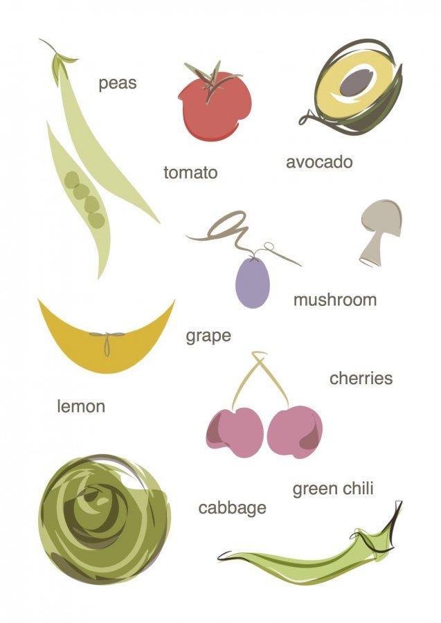 fruit vegetable illustrations digital