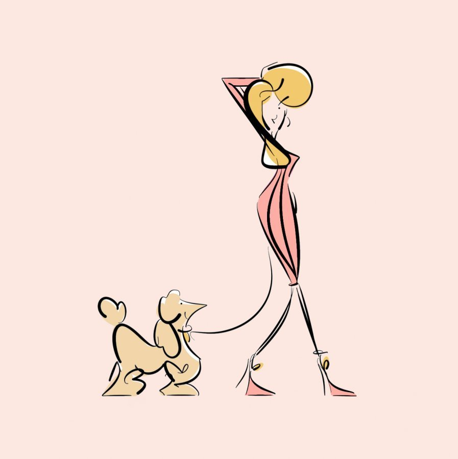 dog walking illustration digital